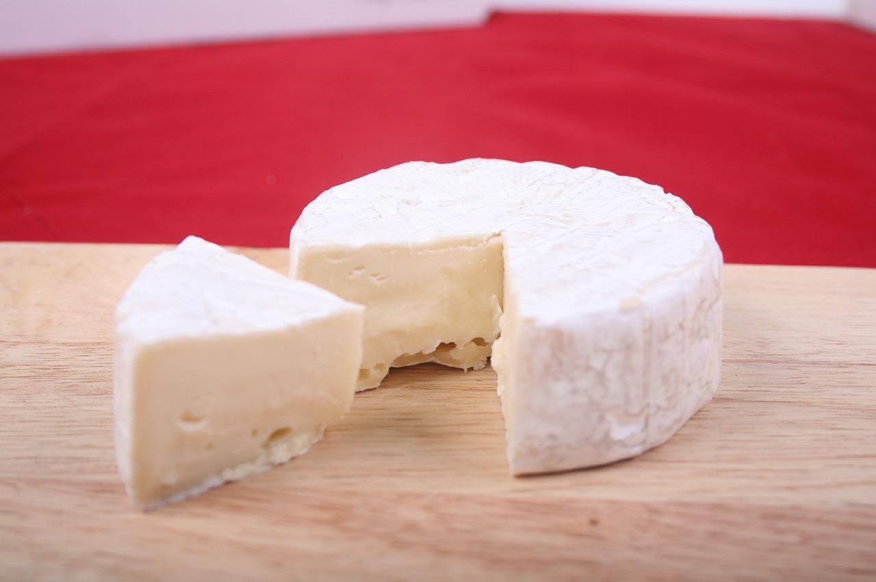 Quelles sont les alternatives au lait de vache?